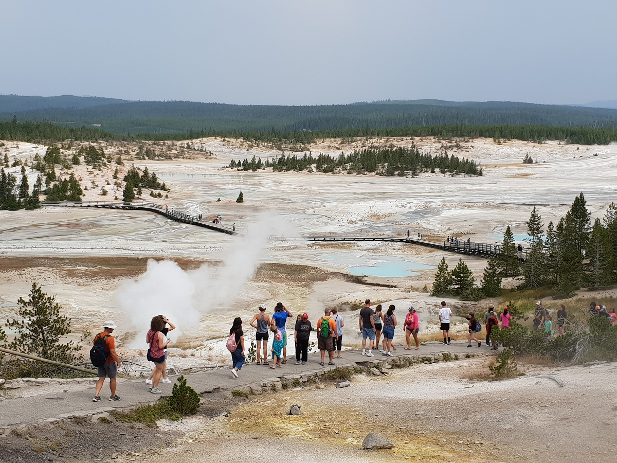 Norris Geyser Yellowstone