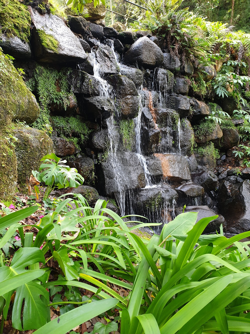 Waterval_Monserrate_tuinen