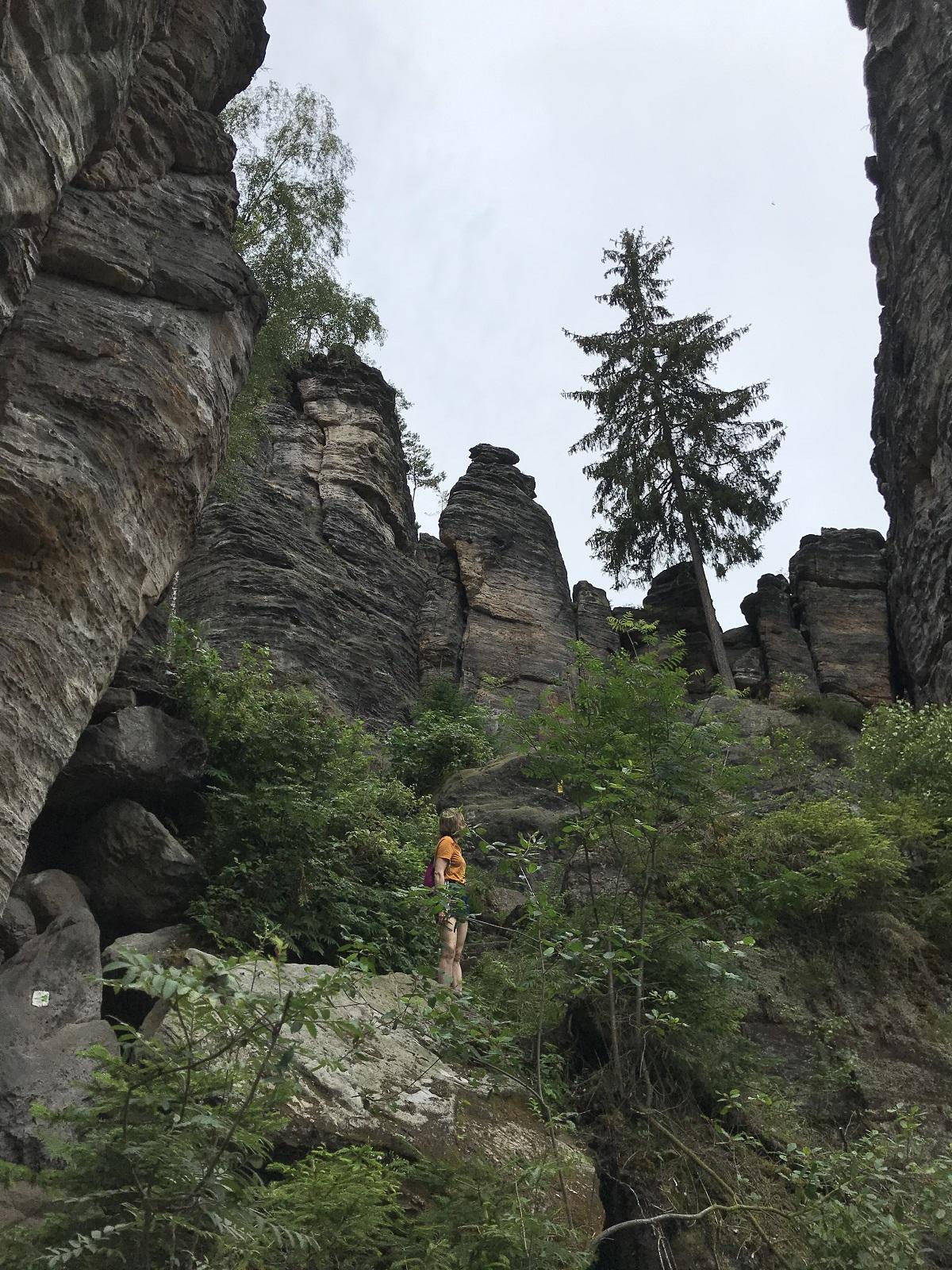 Bielatal_rotsen_Sächsische_Schweiz