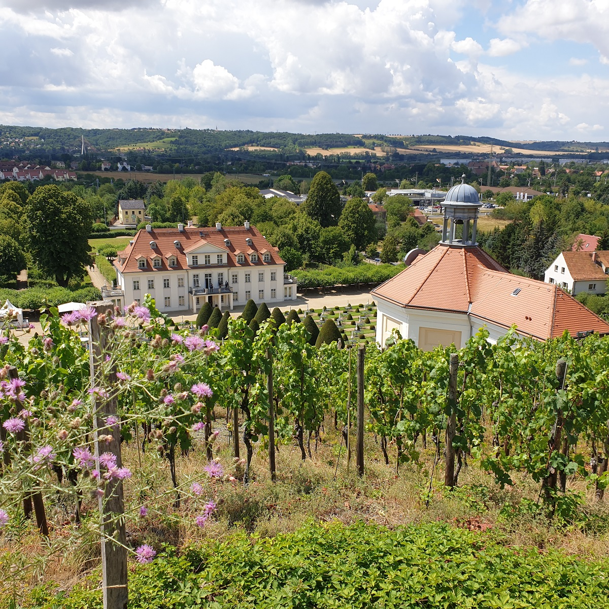 Uitzicht_Schloss_Wackerbarth_Sächsische_Schweiz