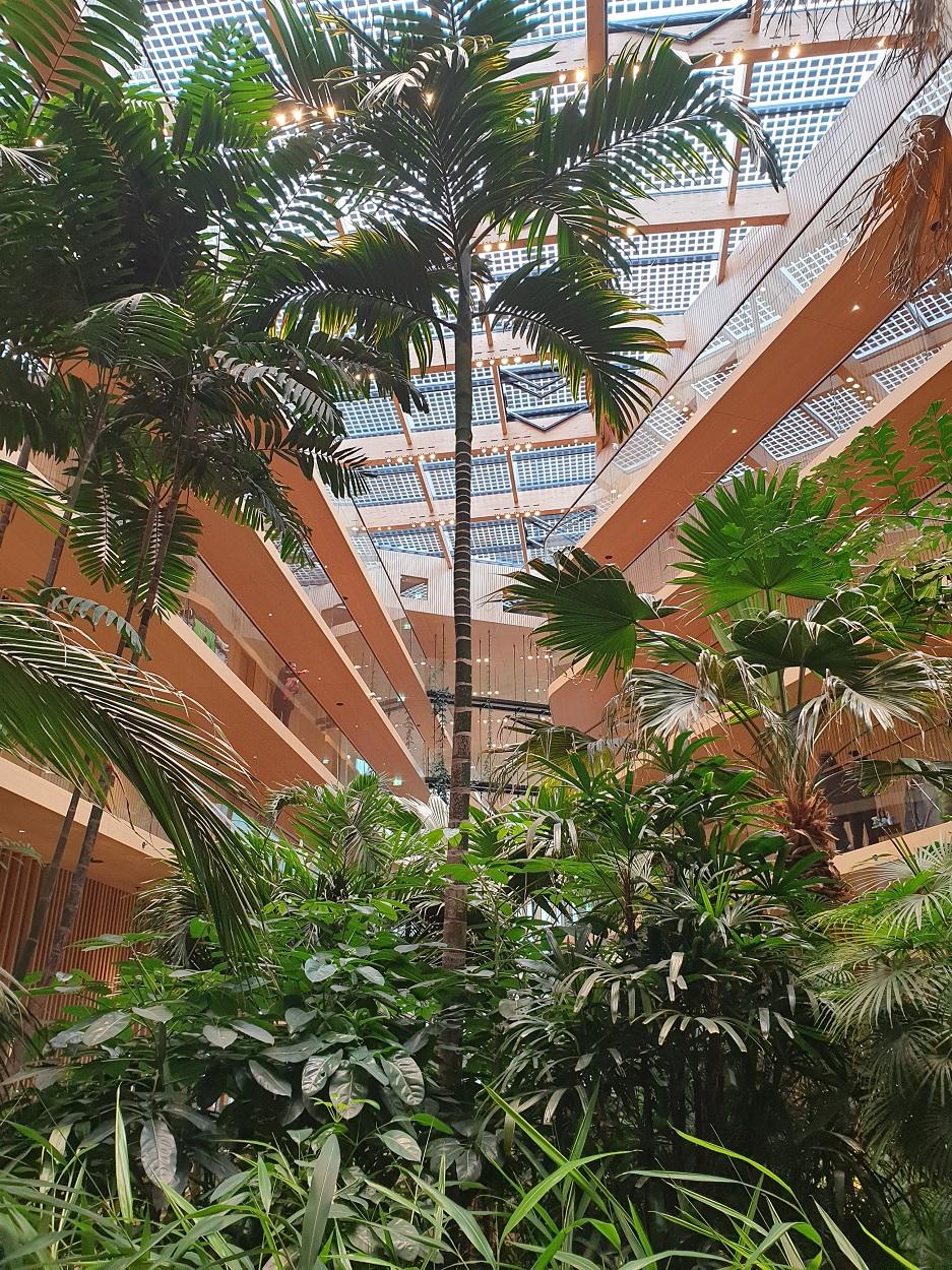 Hotel_Jakarta_lobby_Coronaproof_overnachten