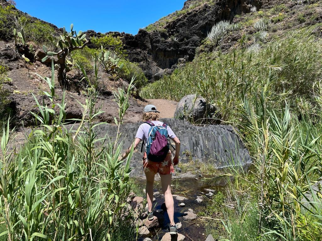 Tenerife_Anaga_kloof_playa_de_Tamadite