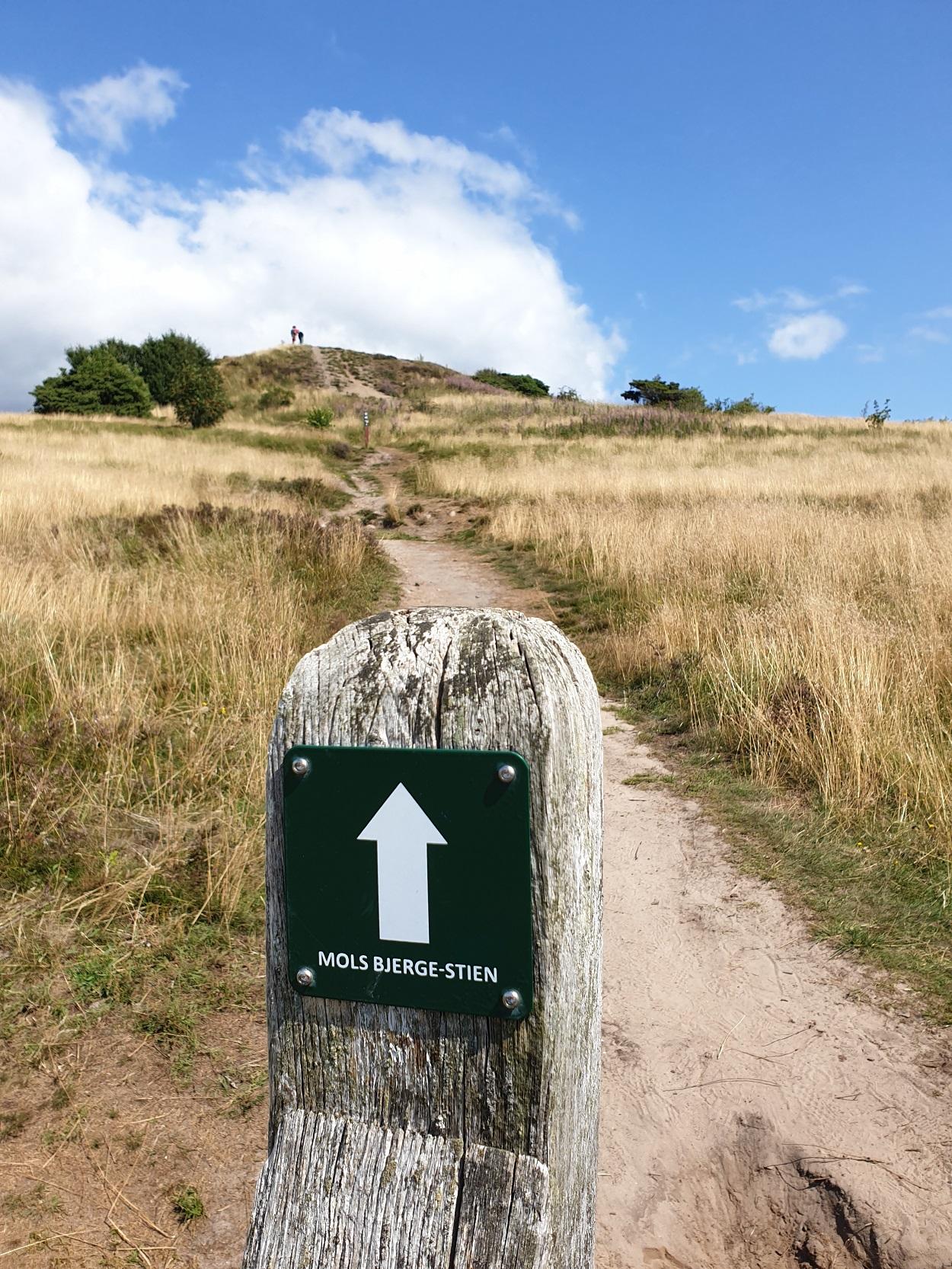 Mols Bjerge Stien_gemarkeerde_route
